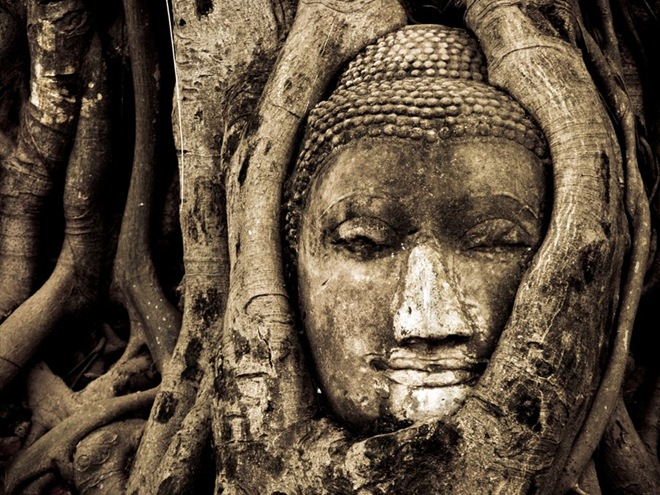 BuddhaThailand.jpg