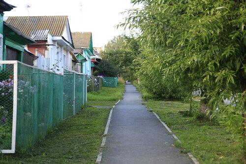 Улица Толстого в Кусе