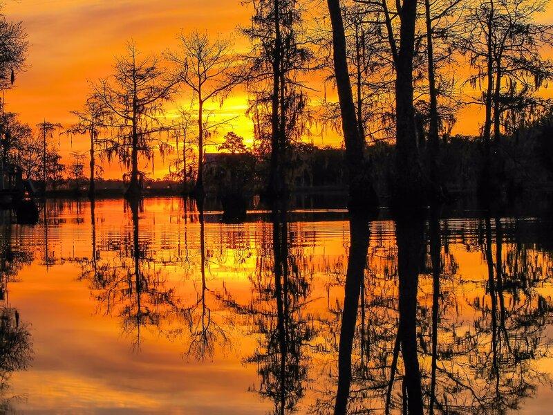 Красивые фотографии природы из Flickr 0 156ba2 c5776b55 XL