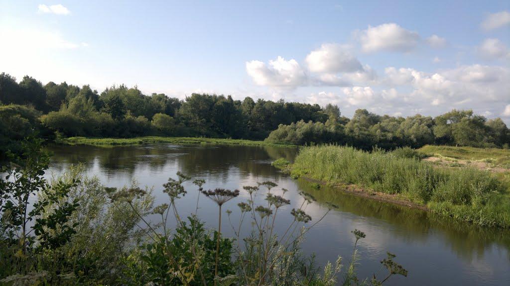 река болва в брянске рыбалка