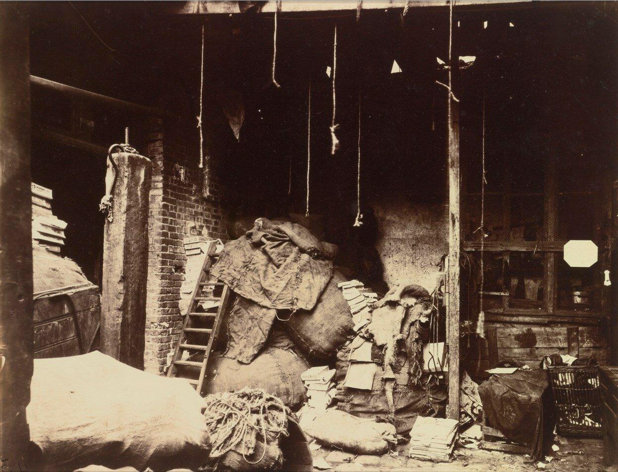 1901. Остров Сите, Порте Даширес, склад старьевщика