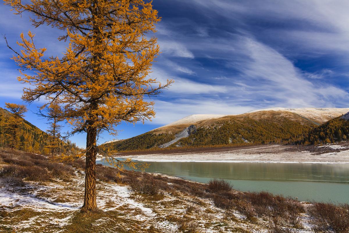 Золотая осень на Алтае. Озеро Аккем