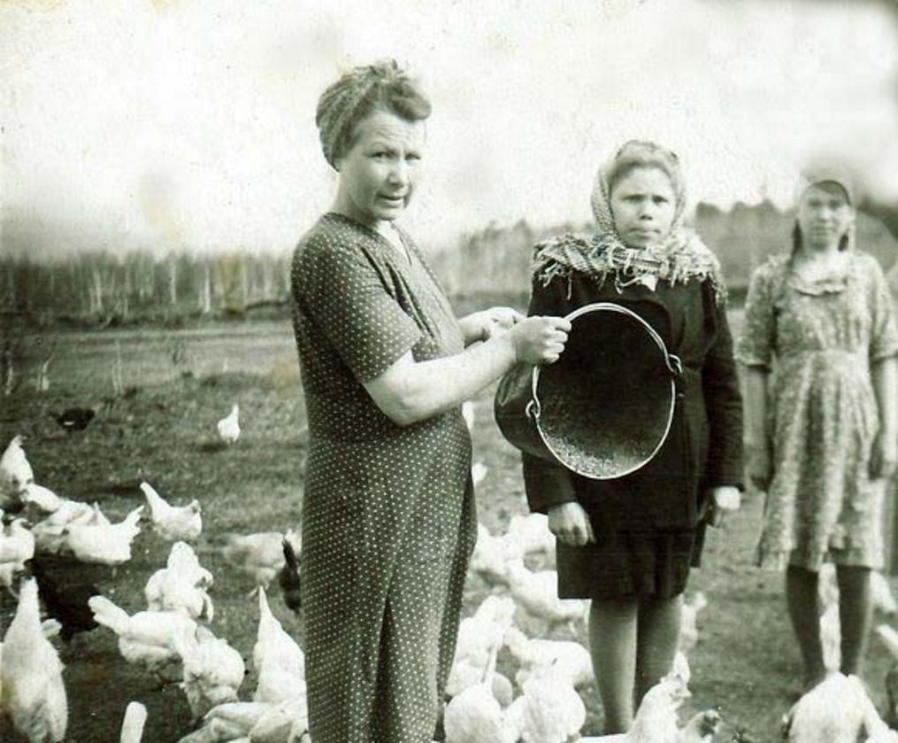 Школьницы отрабатывают Пионерские ступеньки на птицеферме. Даурский район