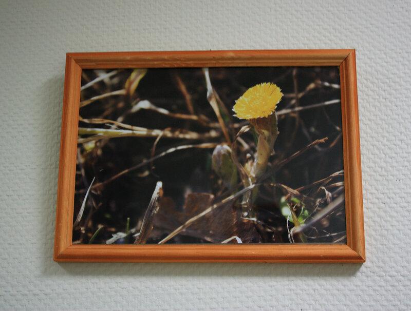 Моя выставка № 2