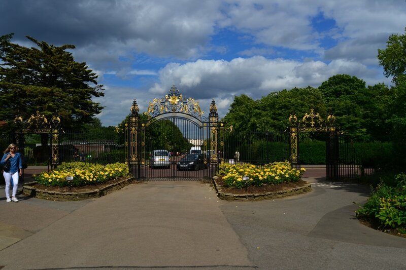 Приглашаем в сказочный королевский сад роз