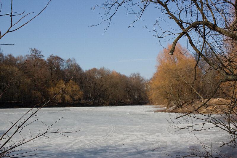 У весеннего пруда