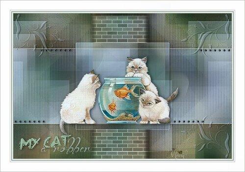 cat-regis.jpg