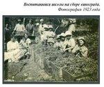 Воспитанники школы на сборе винограда. Фотография 1923 года