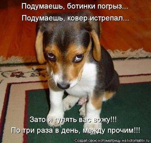 http://img-fotki.yandex.ru/get/4308/c-olia2009.a/0_28a89_db169caa_L.jpg