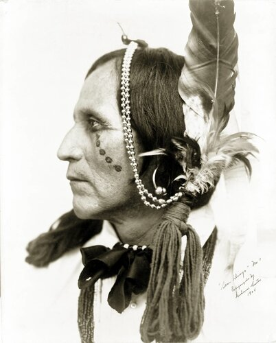 фото Gerhard Sisters,индеец 1904 год