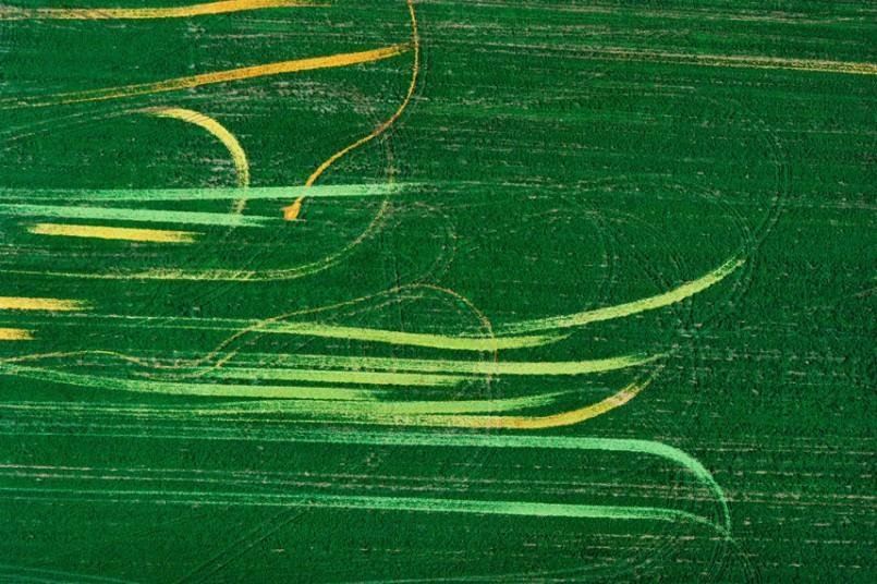 21. Следы помидоров в поле, северо-центральный Огайо, США, 1990 г. (Alex MacLean / Beetles+Huxley)