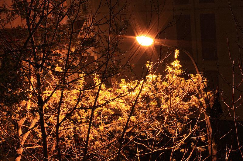 Свет фонаря