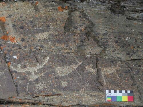 наскальные рисунки древних животных