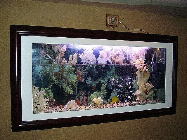 Плоские аквариумы своими руками