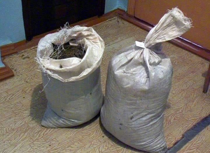 Cотрудники милиции изъяли у жительницы Приморья 13 килограммов высушенной марихуаны