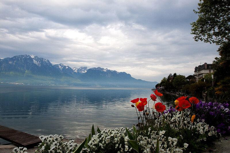 Реки и ручьи: Озеро и маки.