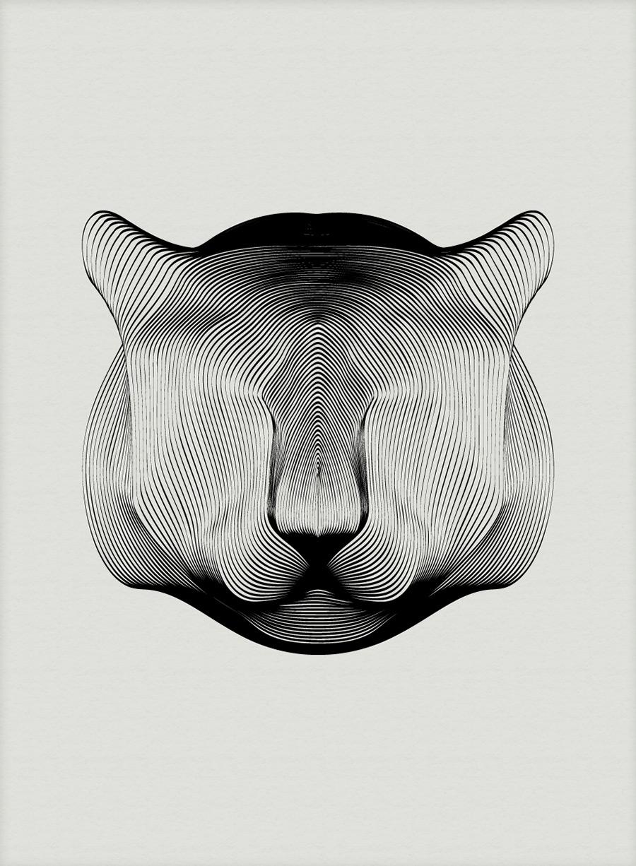 Красивая серия иллюстраций животных