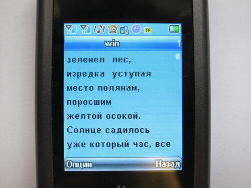 Мобильный телефон Fly SL140 DS - чтение  книги