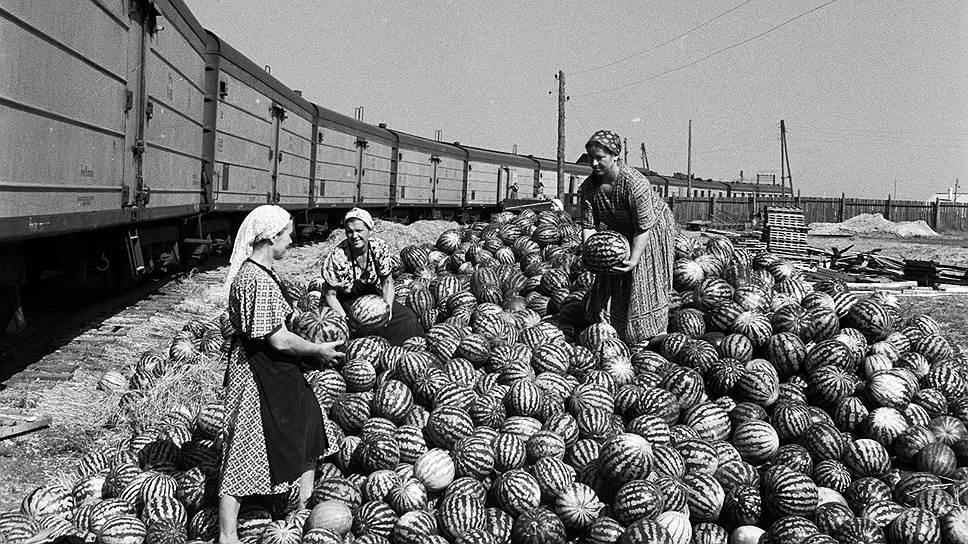 более советская россия на фото из английского архива или бабушки дедушками