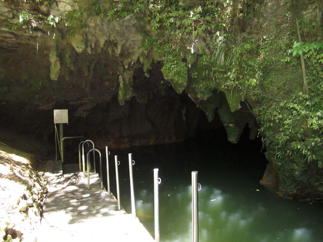 2 Приблизительный возраст пещер Вайтомо составляет более двух миллионов лет, поэтому эта пещера счит