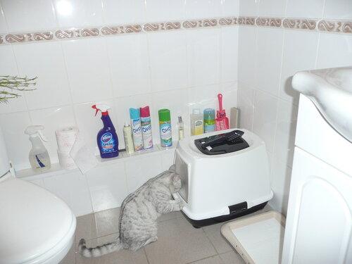 http://img-fotki.yandex.ru/get/4312/dveri-vsem1.9/0_48336_ae7a658e_L.jpg