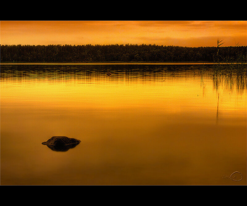 Фотографии Janne Olkkonen