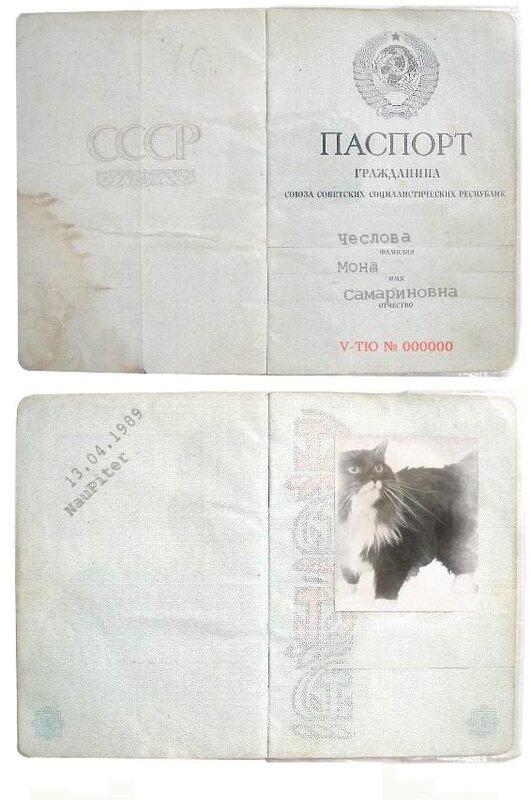 http://img-fotki.yandex.ru/get/4312/klayly.15/0_39cd1_efea38fe_XL.jpg