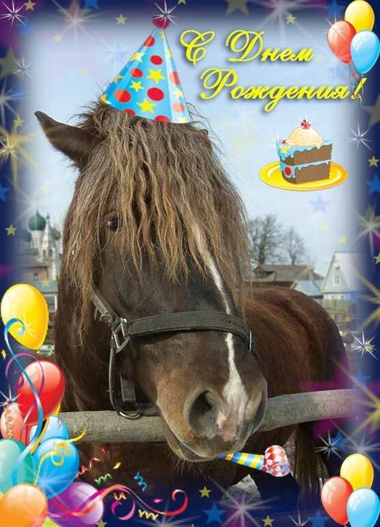 красивые открытки с лошадью с днем рождения многих