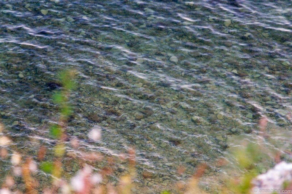 Прозрачная вода, Черное море