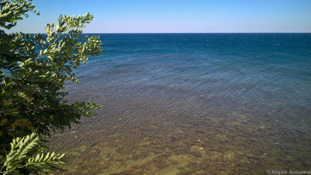 Прозрачная вода, Толстый мыс, Геленджик, Черное море