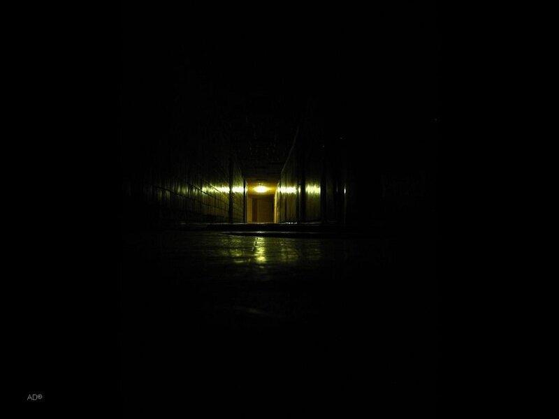 ночной дозор