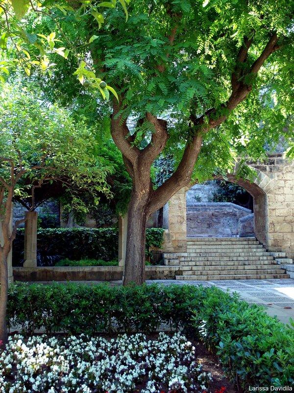 Королевские сады.