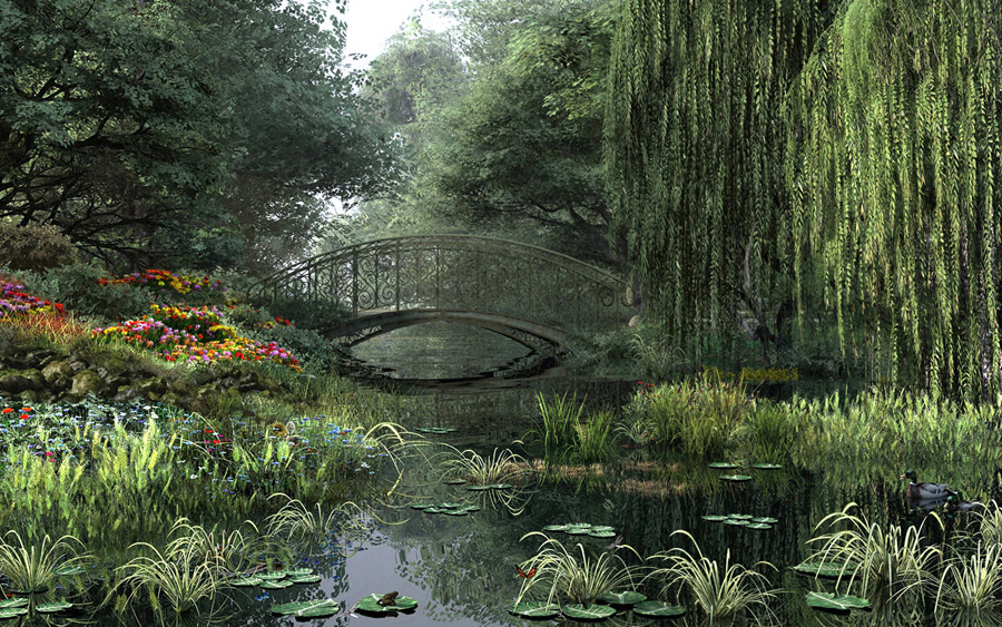 The Willow Pond
