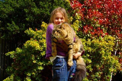 ru_cats: Наш младший кисик любит изображать из се