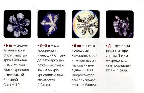 Фото из журнала Discovery