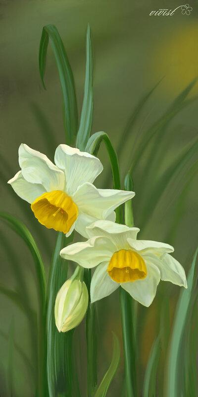 В дни проведения Фестиваля Нарциссов по цветочным полянам Монтре проводятся экскурсии для туристов Весь город.