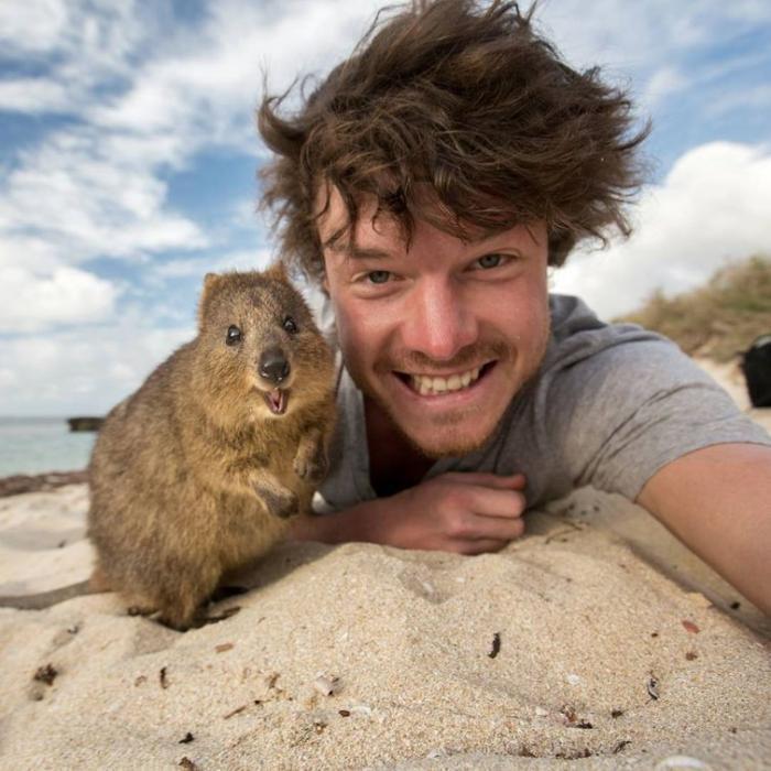 Этот парень чемпион по съёмке позитивных селфи с животными