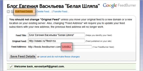 """Если вы не помните, какую ссылку надо вписать, отправляйтесь в свой аккаунт на FeedBurner  и жмите на ссылку """"Edit Feed Details…"""""""