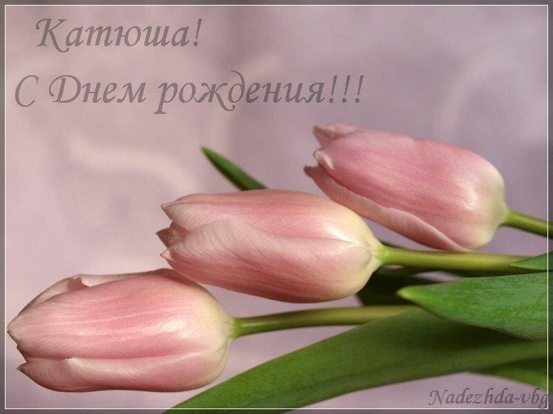 Картинка с днем рождения екатерина михайловна