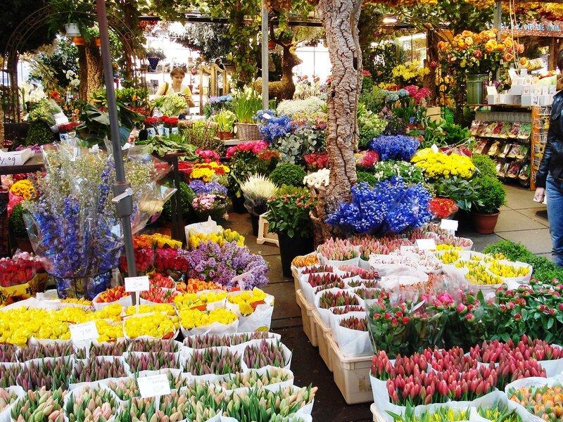 Букеты заказ, магазин 7 цветов в с п базар