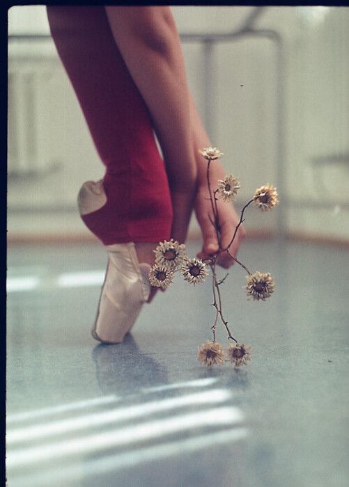 ах,эти ножки