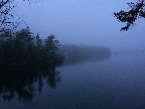 Зимние туманы залива Фанди в Канаде.
