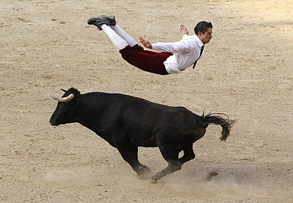 Фото приколы. Прыжок через быка