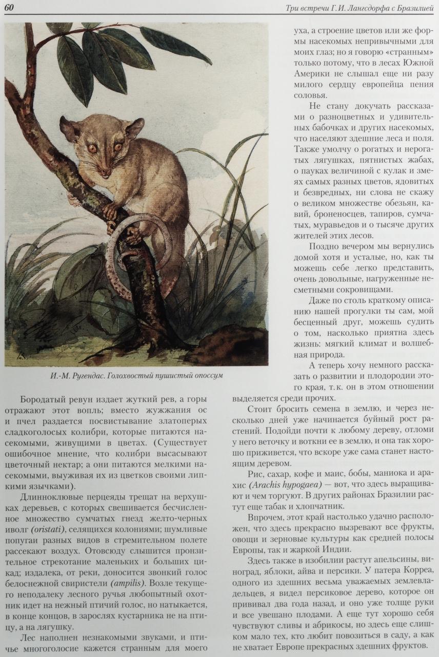 российские князья, цари, императоры : [коллекц. изд.]. pdf