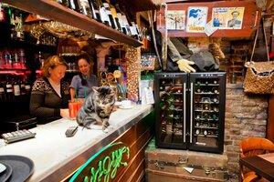 Что посмотреть в Питере - Достопримечательности Питера - Арт-кафе «Сундук»