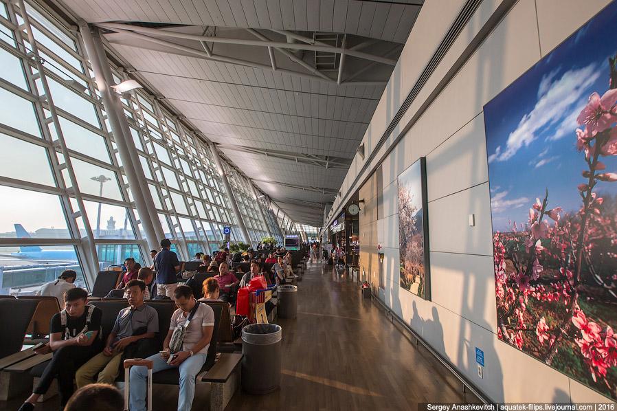 17. Малышей в нашей части терминала не наблюдалось совсем! Только 777, 747, 330, 340, 380... И