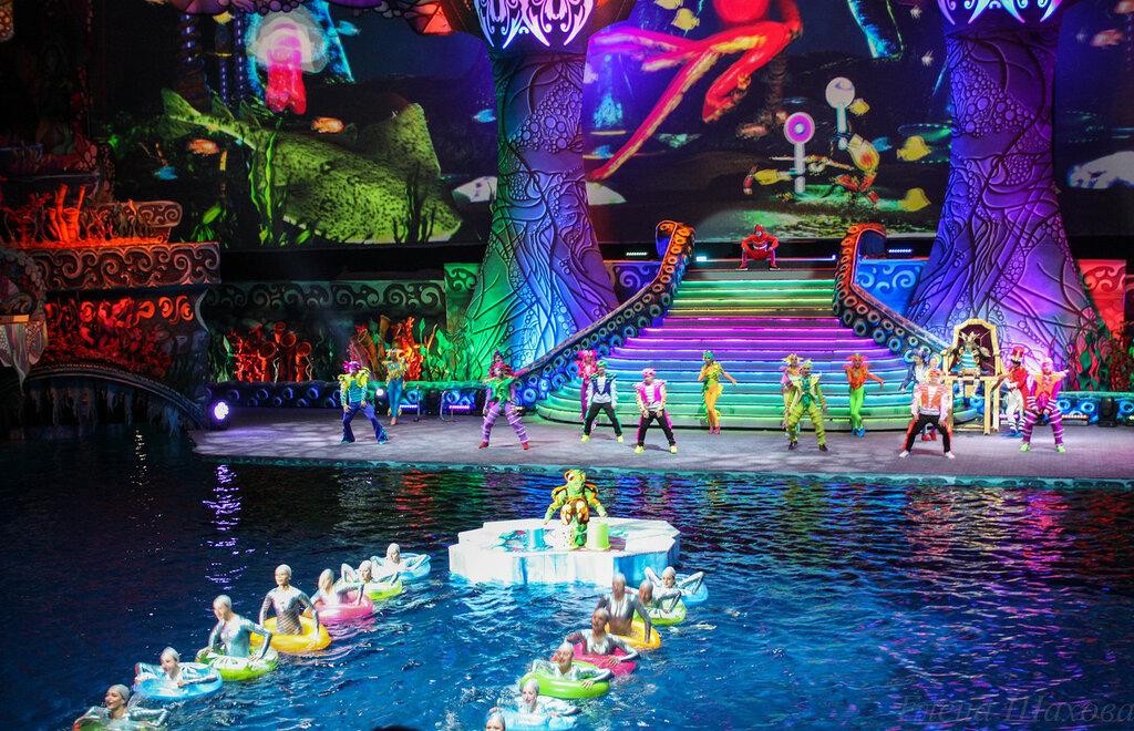 Олимпийский - бассейн-4.jpg
