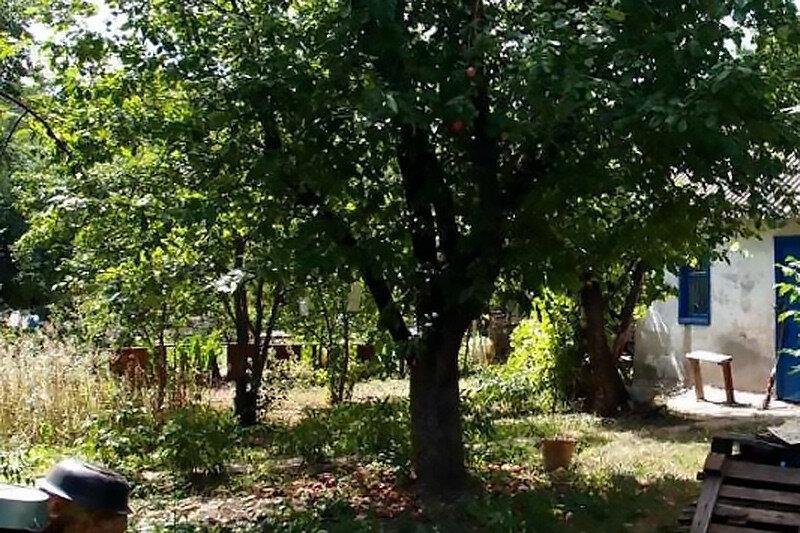 Садовый участок в Монастырском лесу