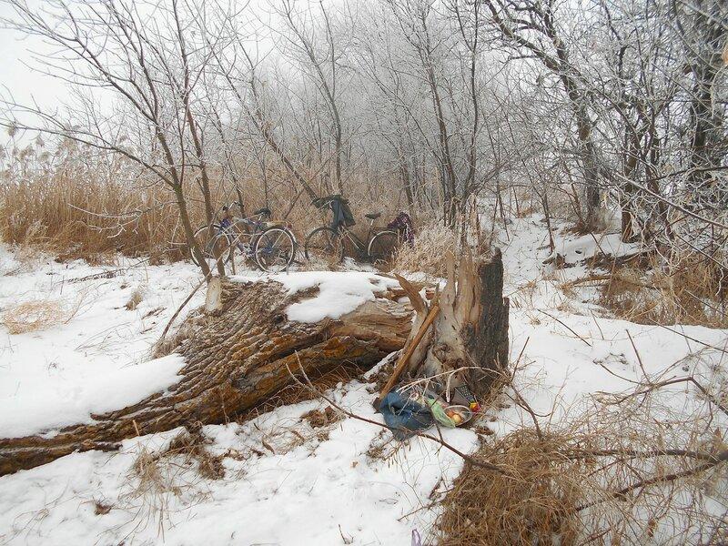 Кони скромно прислонились ... В походе декабрьском, снежно-туманном,