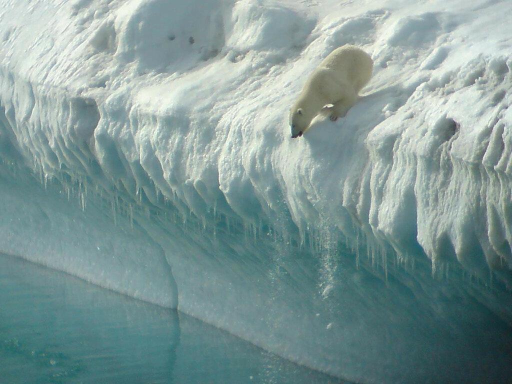 icebergs-030.jpg